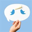 To tweet or not to tweet…